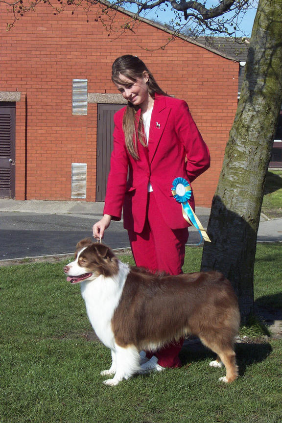 Jake with Faye Bevis who handled him to Best of Breed