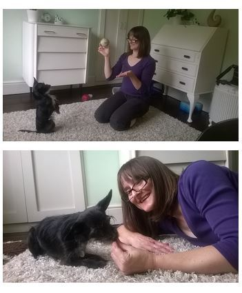 Rita and me in my office at home with her two best motivators - food and her ball
