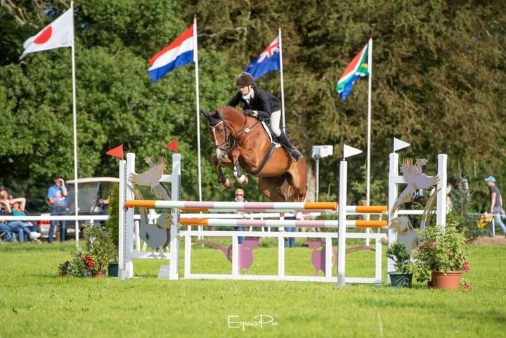 Ansiei Youngstock competing internationally 2019
