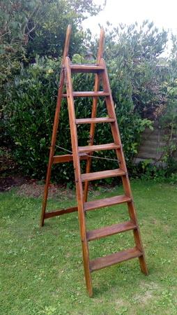 8 Step Simplex Step Ladder - Stunning
