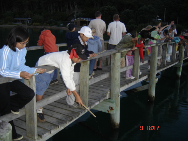 fishing on Kawau Island
