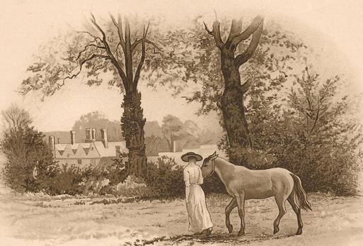 'The Faithful Pony'