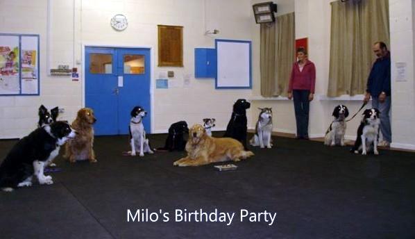 Milos Party