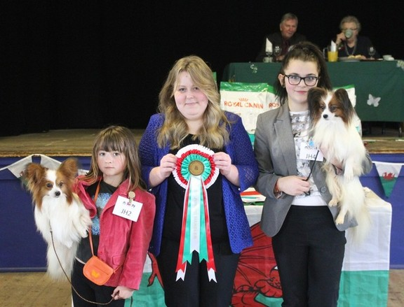 Junior Handler winners