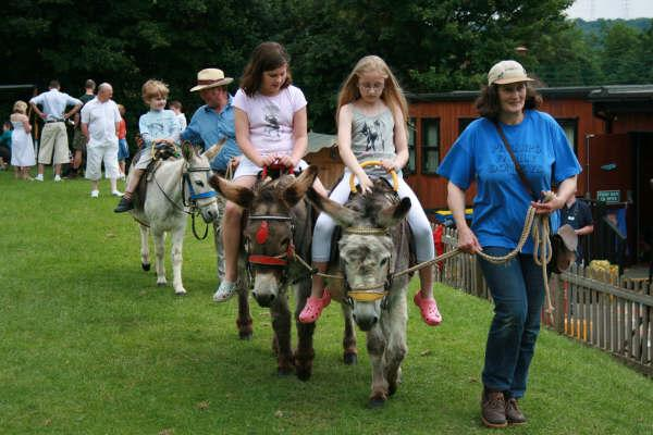 Donkey rides at the school fete