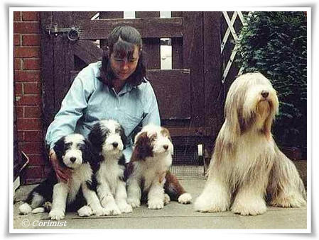 Chriscaro Carmen with puppies - 1990