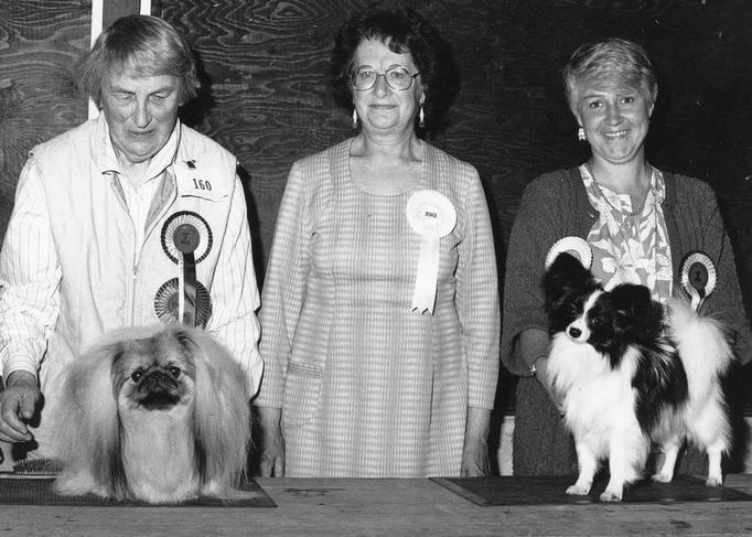 Eddie winning the Toy Puppy Group