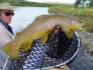 Barbara's  big fish on Caddis 6/21/10