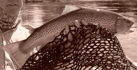 Arny's big one on a Hopper! 8/9/10