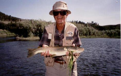 Missouri river big brown eats a caddis