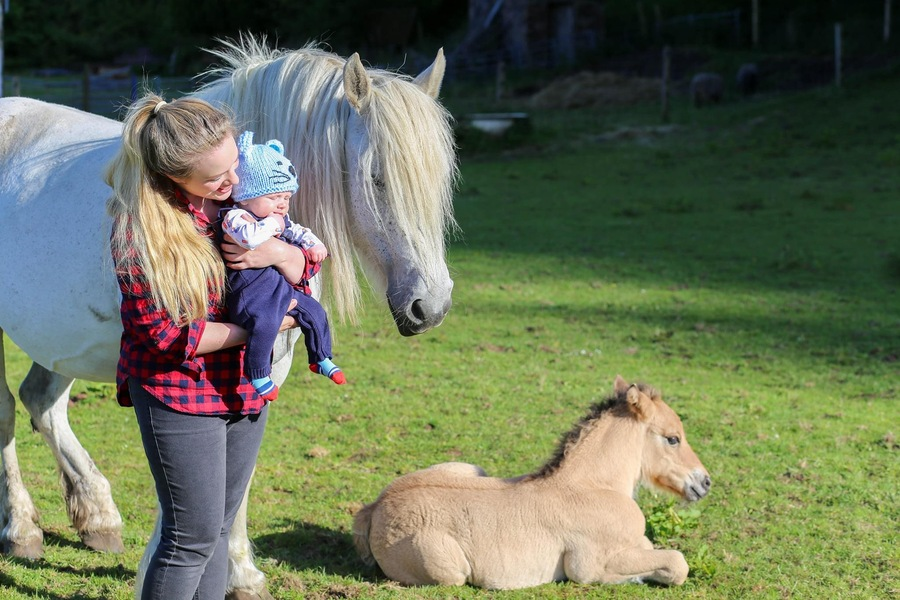 Joanna and Baby Magnus saying hello to foal Magnus.