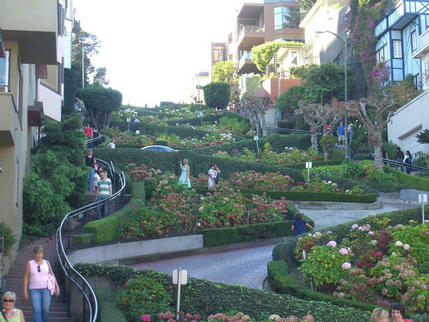 The world's crookedest street (Lombard Street), San Francisco