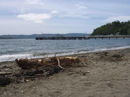 Days Bay, Wellington