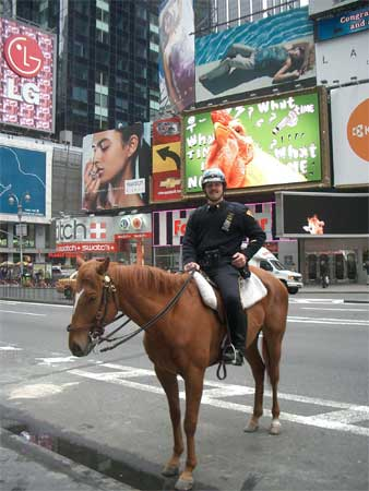 Mounted Policeman at Times Square