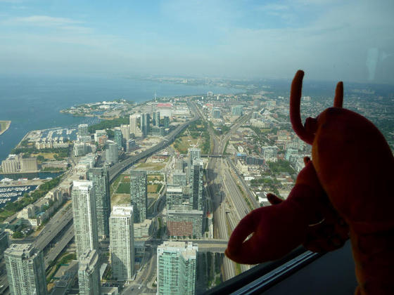 View from the top of the CN Tower, Toronto