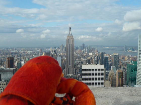 Admiring the Empire State Building from the 'Top of the Rock', New York
