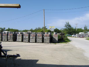Stone Crab Traps in Everglades City