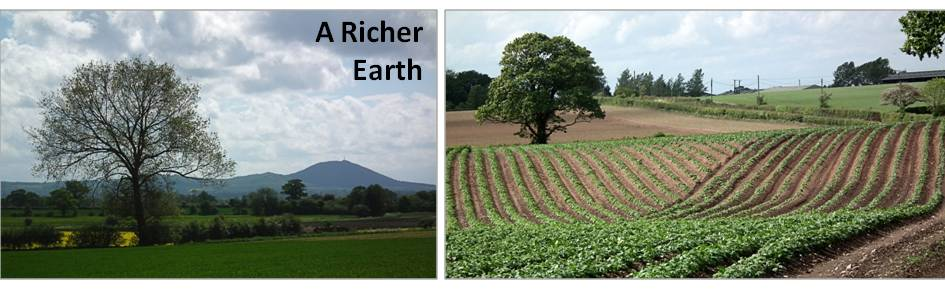 A Richer Earth