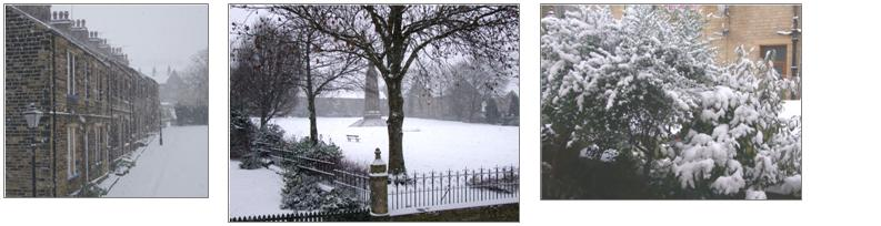 Akroydon in the Snow