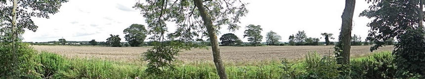 View from caravan - Suffolk