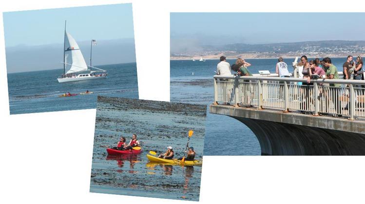 Monterey Aquarium and the Bay