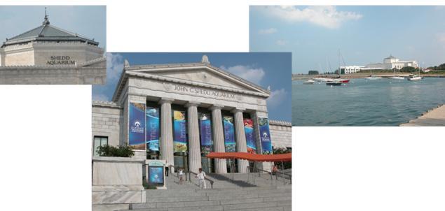 John G Shedd Aquarium composite