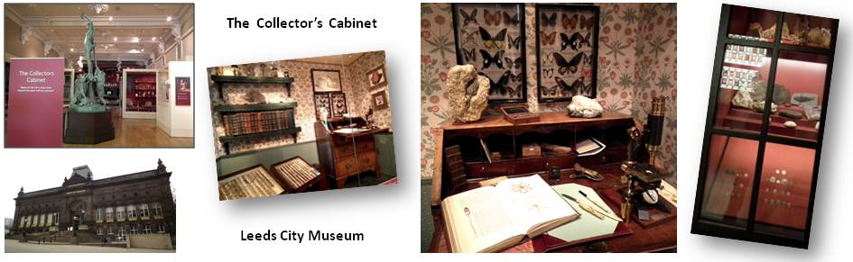 Leeds City Museum - Collectors' Cabinets