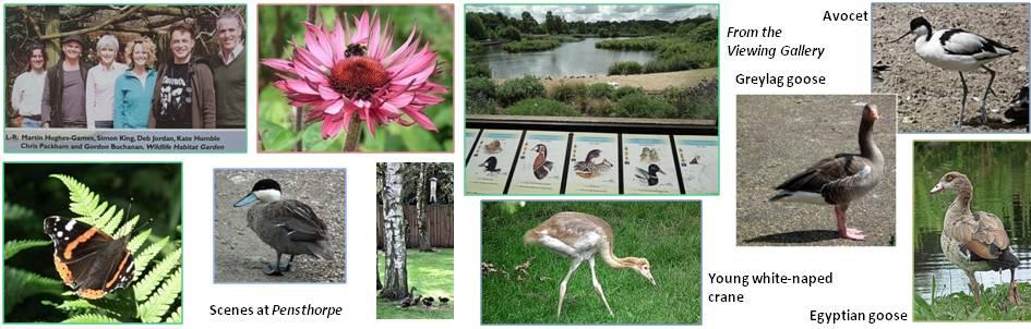 Pensthorpe Nature Reserve