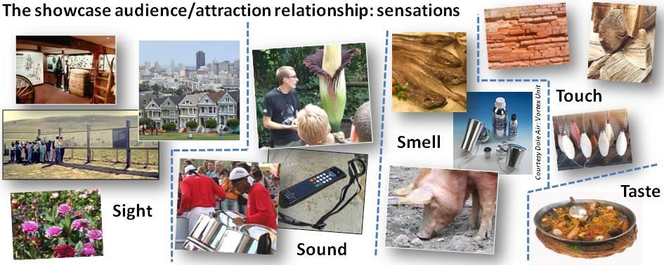 Showcases - sensations