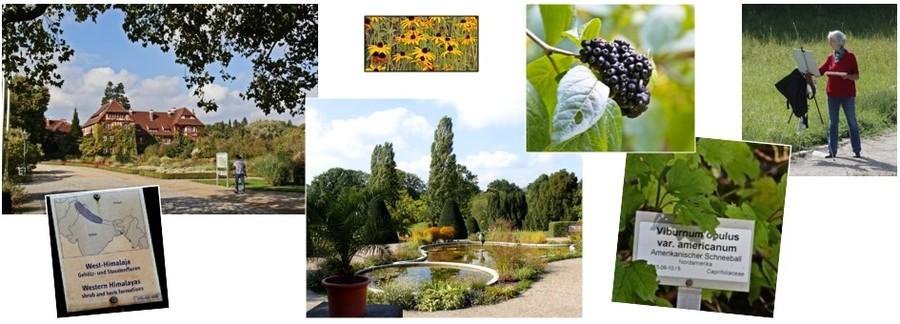 Berlin - Botanical Garden