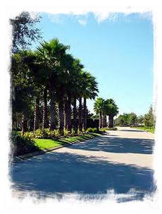 Highlands Reserve Boulevard