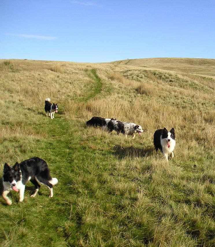 Pendle Hill - Oct '06