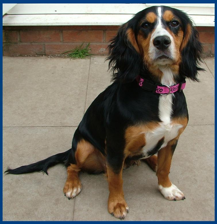 Maisie at 6 months