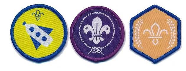 Beaver badges ident