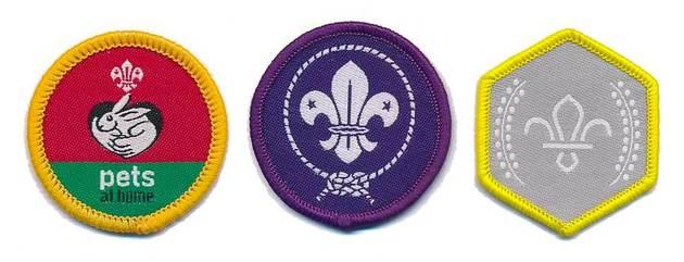 Cubs badges ident