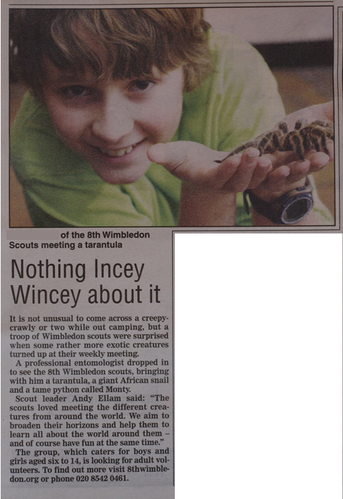 Report from Wimbledon Guardian on 8th Wimbledon Scouts 'Spiders and Snakes' evening