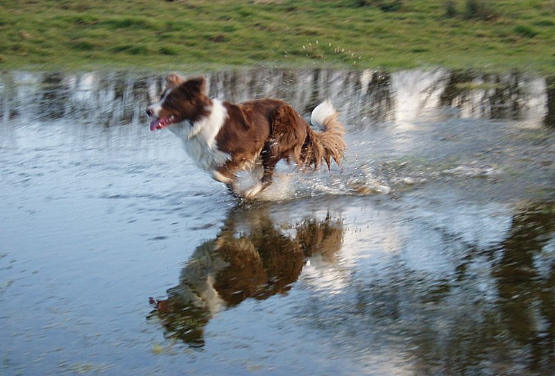 Walking on water? Yer Right!