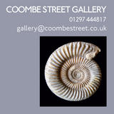 coombe street gallery
