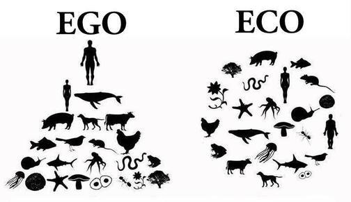 EgoEcoCircle