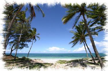 The Fabulous Bofa Beach at Kilifi