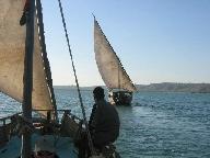 Dhows sailing on Kilifi Creek