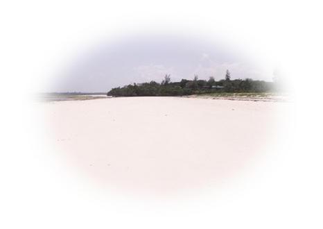 A crowded Kenya Holiday on Bofa Beach Kilifi!