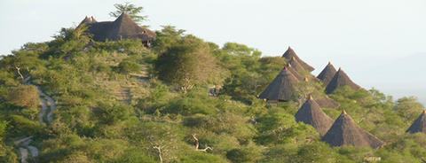 Lions Bluff Safari Lodge
