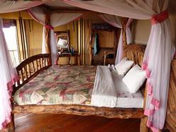 Safari Bedroom