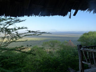 Looking out over the game reserve