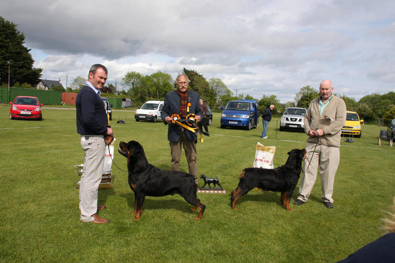 Best In Show & Reserve Best In Show