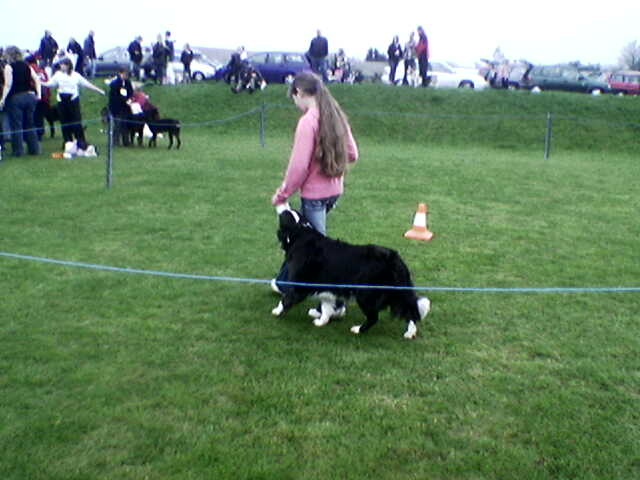 Kate & Kamarda Guinevere at Elthea at their 1st obedience show together