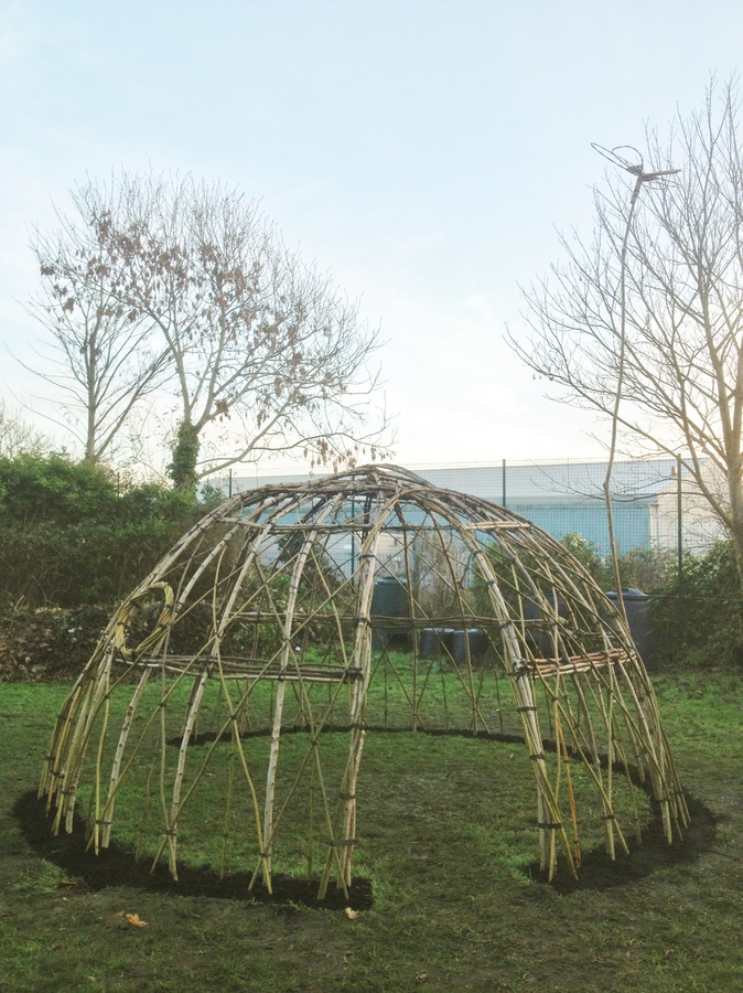 Newly planted living willow dome at Rumboldshwyke Infant School, Chichester. One of our willow dragonflies on top hovering on a hazel rod.