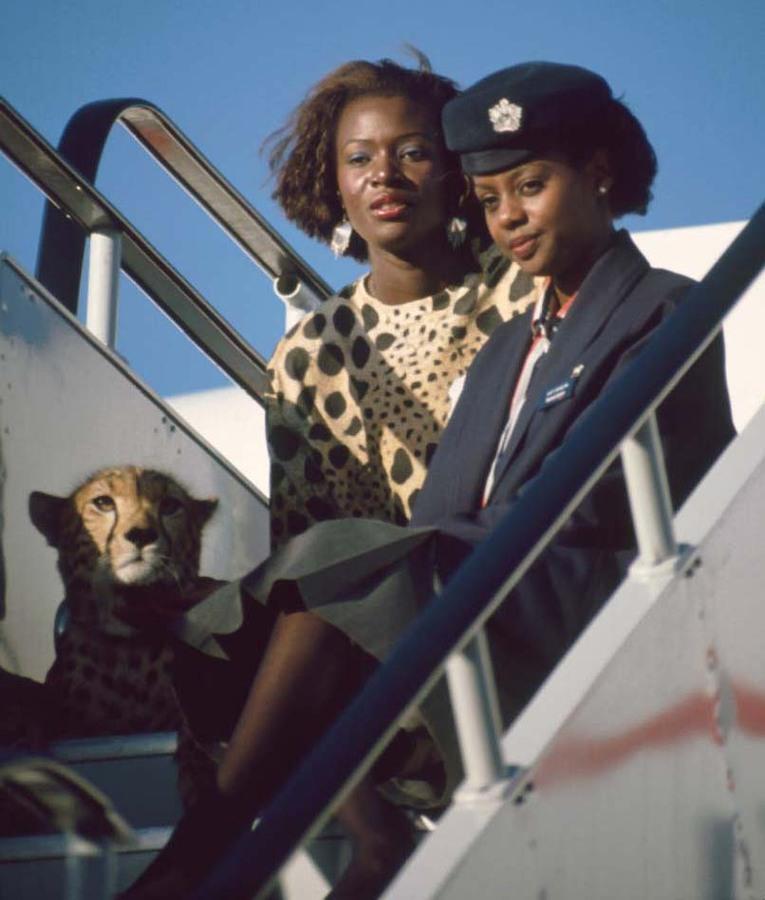 Cheetah and BA girls, Nairobi