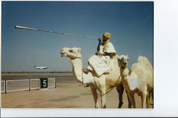 camel kano